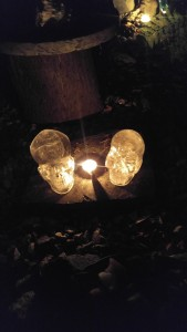 Crystal Skull Night Ceremonies